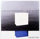 イデアの水槽/GRAPEVINE