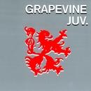 ジュブナイル/GRAPEVINE