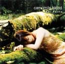 camomile blend/藤田恵美