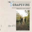 Everyman,everywhere/GRAPEVINE
