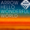ARROW HELLO WONDERFUL WORLD/the ARROWS