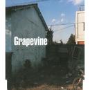 スロウ/GRAPEVINE