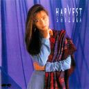 HARVEST/工藤静香