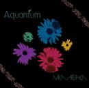 Aquantum/有坂美香