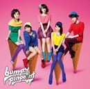 pinpoint 通常盤/bump.y