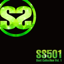 SS501 Best Collection Vol.1/SS501