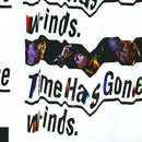 Time Has Gone/w-inds.