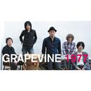 1977/GRAPEVINE