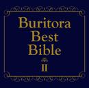ブリトラBESTバイブルII~ひとりでこっそり聴いた方がいい曲集~/ブリーフ&トランクス