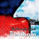 Bulbous Bow/Bentham