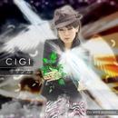 サザンカ/CIGI