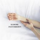 KAMORE/Pantobrown