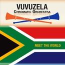 ブブゼラ!世界のうた/ブブゼラ・クロマチック楽団