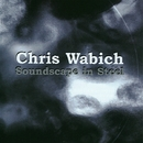 Soundscape In Steel/Chris Wabich