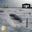 なごり雪/中井 亮太郎