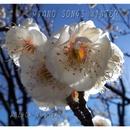 PIANO SONGS WINTER/富樫春生