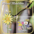 David Madden & Passeiros/David Madden