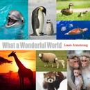 ホワット・ア・ワンダフル・ワールド(この素晴らしき世界) - single/Louis Armstrong