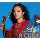 A CUBA/SAYAKA y su Palma Habanera