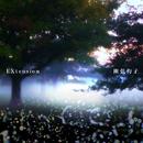 Extension/幽弦杓子