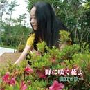 野に咲く花よ/山口マリー