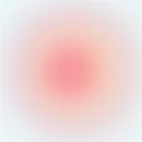 光 - Luz/小沼ようすけ