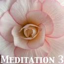 Meditation 3/P.R.E.M
