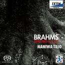ブラームス : ピアノ三重奏曲 第1番,第2番/なにわ トリオ