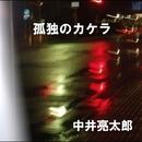 孤独のカケラ/中井 亮太郎