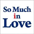 SO MUCH IN LOVE (CM ver.)/Raj Ramayya