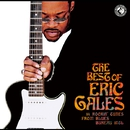 The Best of/ERIC GALES