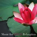 Music for YOGA Relaxation・・・ピアノ・アコースティック・ヒーリング/HANI