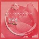 ピアノで綴る さだまさしの世界 琴弦集 Vol.5/Cafe de Masashi