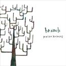 branch/Meine Meinung