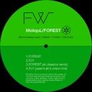 FOREST/MoliquL