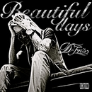 Beautiful days/D-FRIS