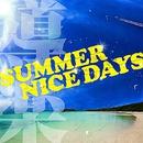 SUMMER NICE DAYS/導楽
