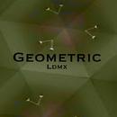 Geometric/Ldmx
