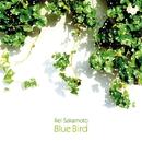 Blue Bird/坂本 麗衣