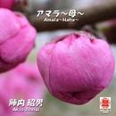 Sound of KYOTO~すきま~/アマラ~母~/陣内昭男
