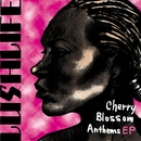 Cherry Blossom Anthems EP/Lushlife