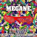 MEGANE/HYDROP
