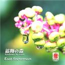 Sound of KYOTO~すきま~/鉱物の森/イースト・スノーマン