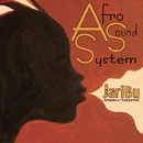 AfroSoundSystem/JariBu Afrobeat Arkestra
