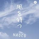 風を待つ - Single/NAOCO