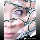 White Rose/Murata Eri feat.limitbreak