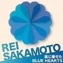 風に乗せたBLUE HEARTS/坂本 麗衣