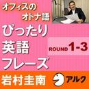 オフィスのオトナ語 ぴったり英語フレーズ <ROUND 1-3> (アルク)/岩村圭南