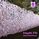Sound of KYOTO~すきま~/Mystic File/イースト・スノーマン