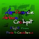エールフランス エアバス コックピット 北アフリカへの飛行とパリ・ランディング/航空サウンド 武田一男プロデュース作品